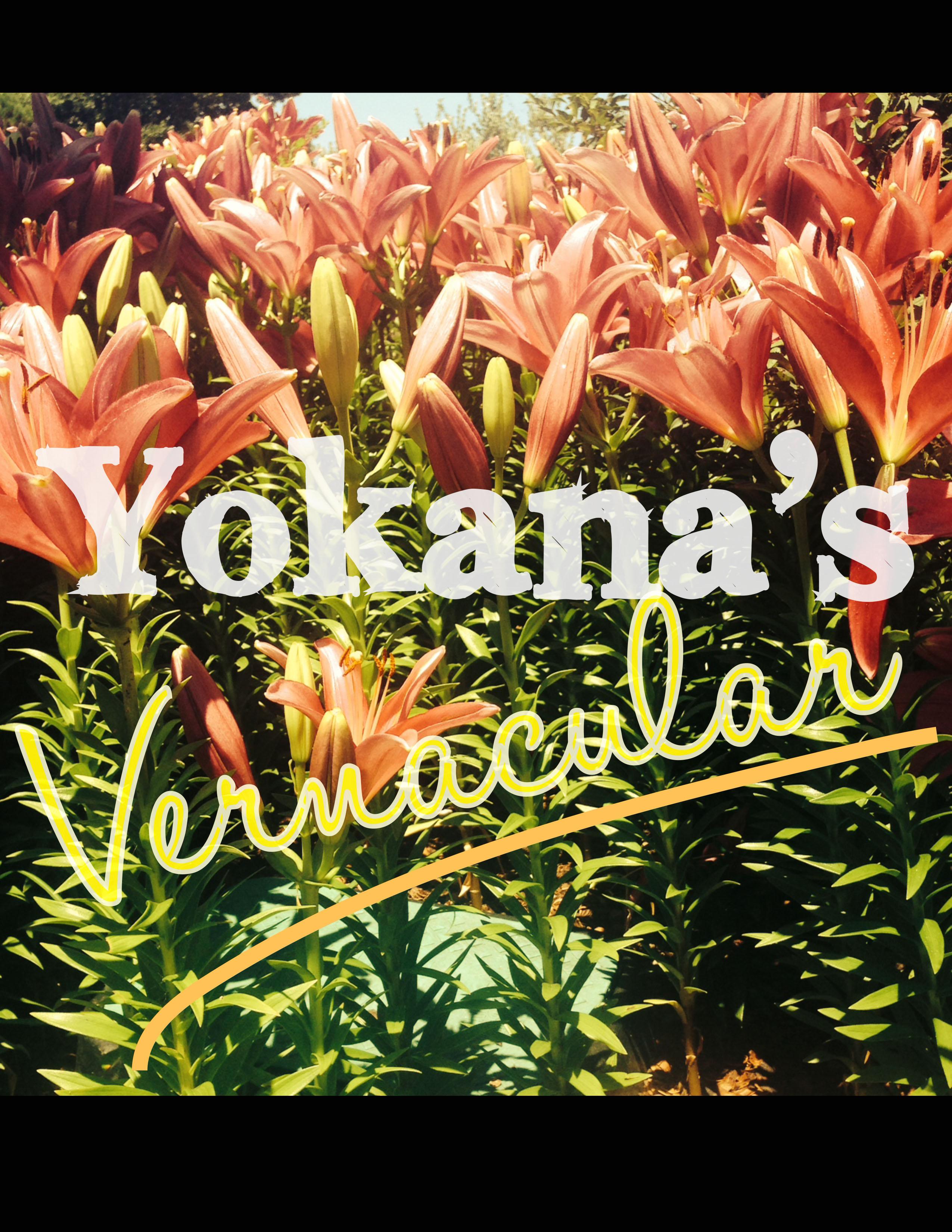 Yokana's Vernacular