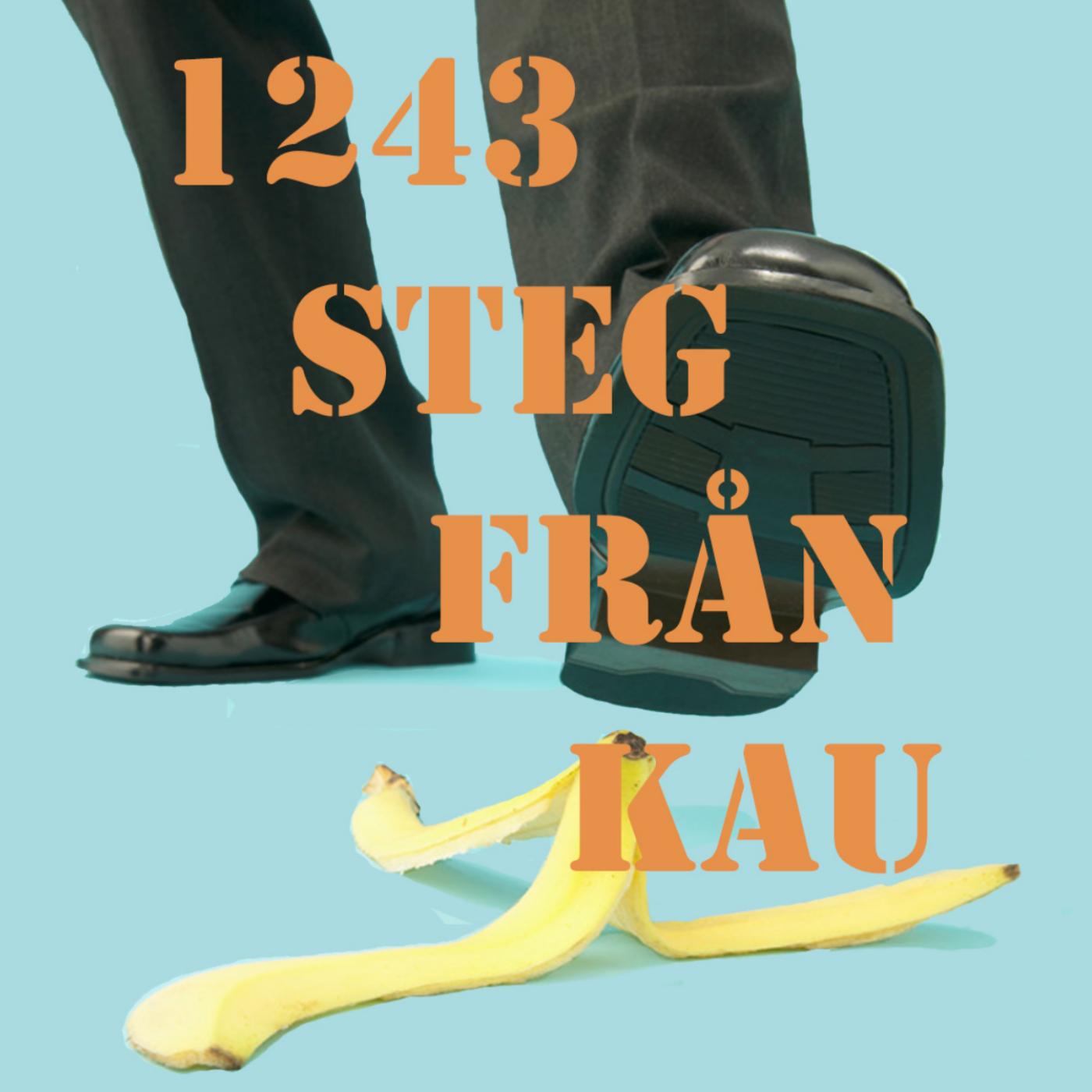 1243 Steg Från Kau