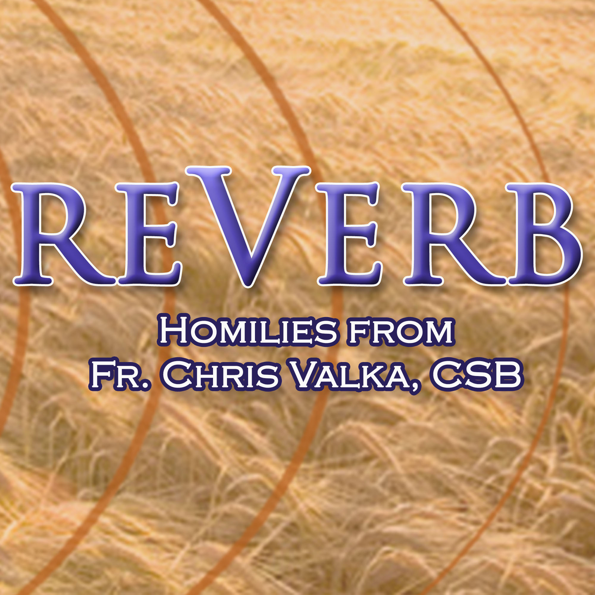 reVerb Homilies