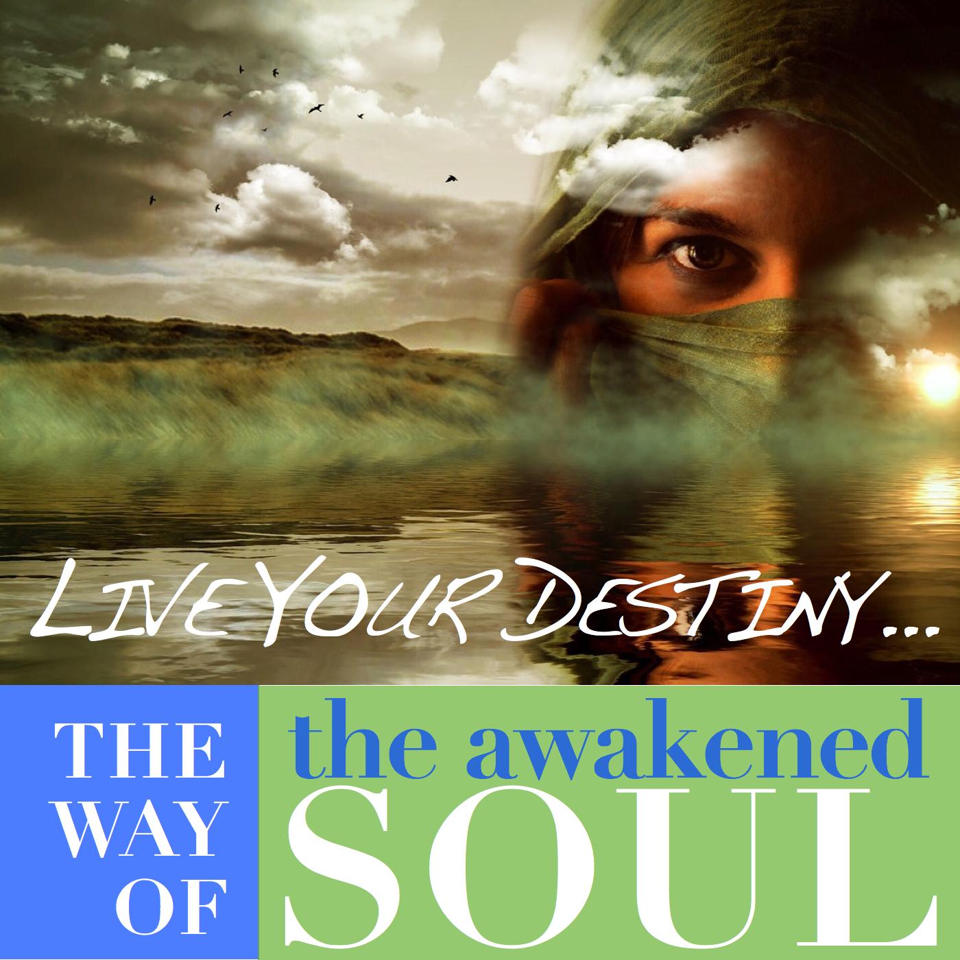 TheWayOfTheAwakenedSoul