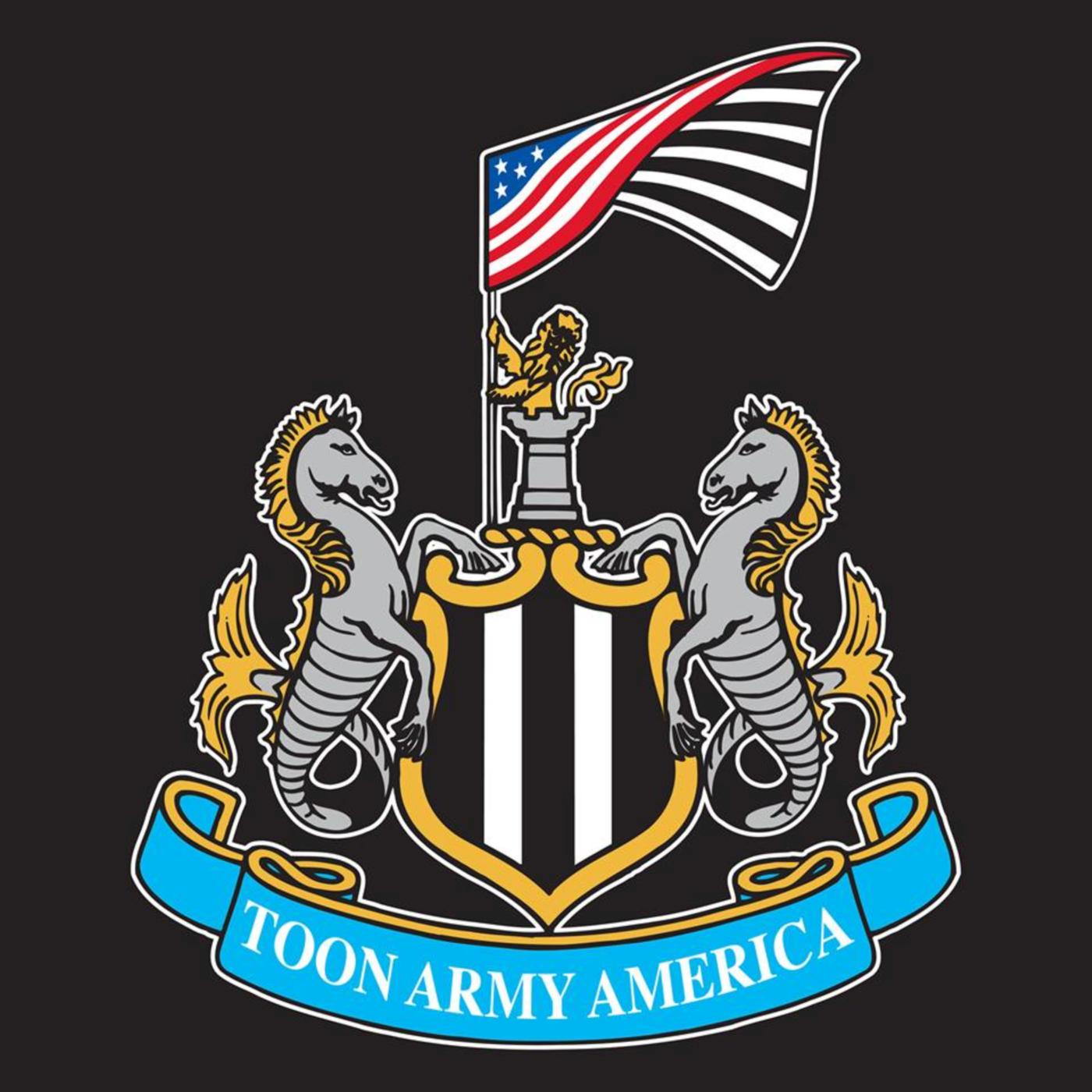 Toon Army America