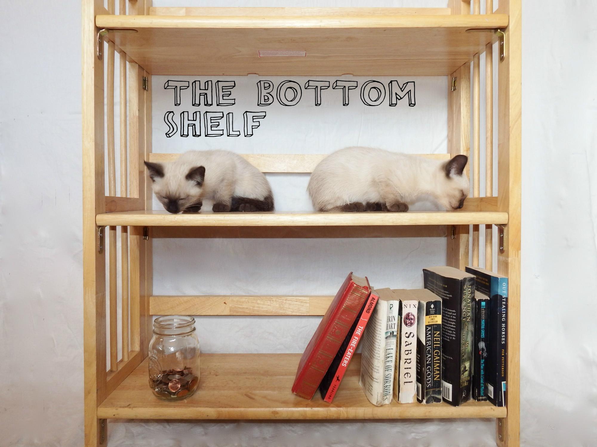 Bottom Shelf Podcast