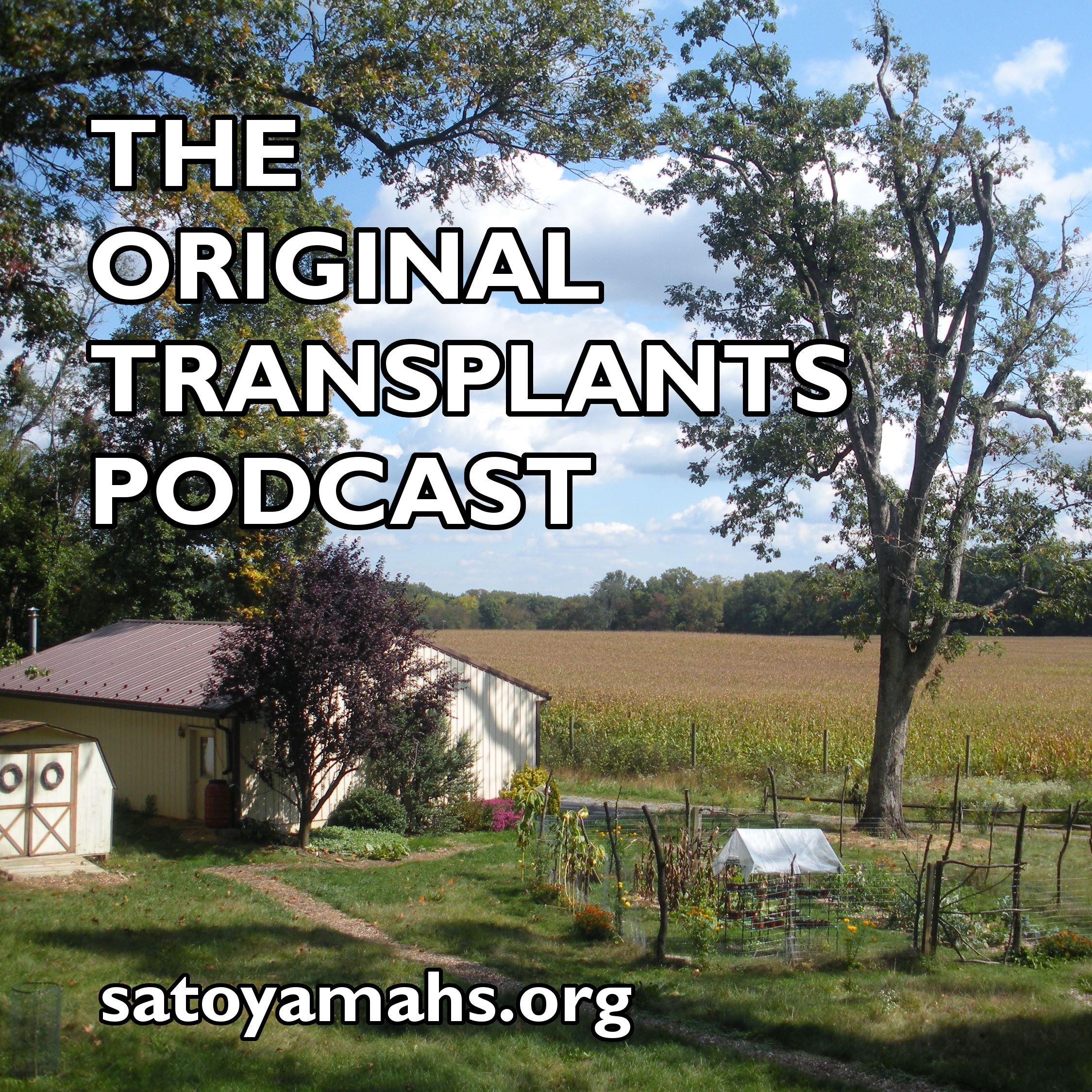 Original Transplants