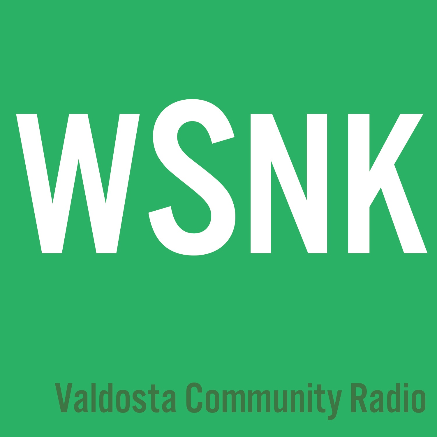 WSNK Valdosta Community Podcast
