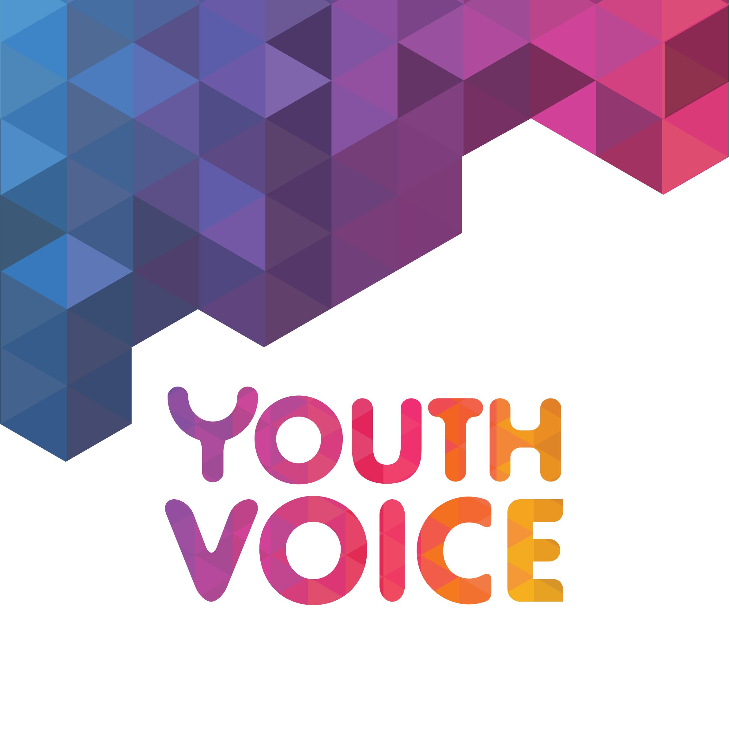 The Voice Of Youth Podcast