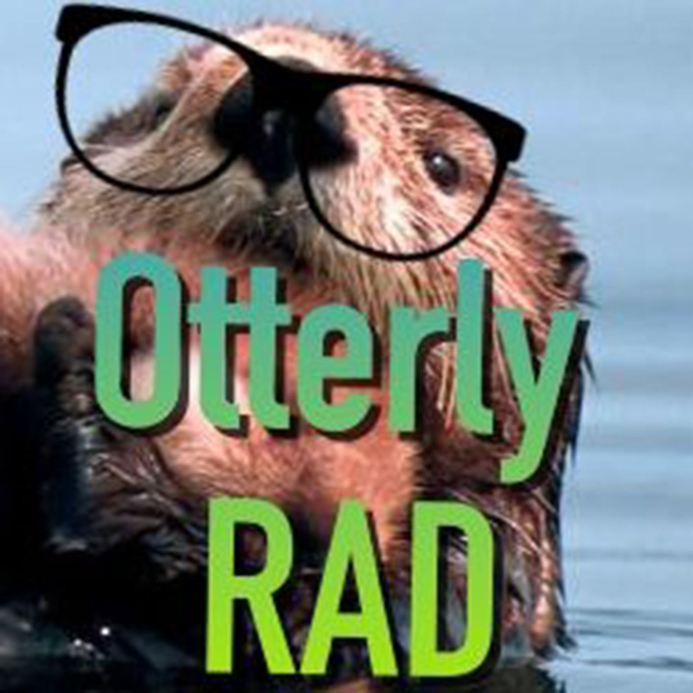 Otterly Rad!