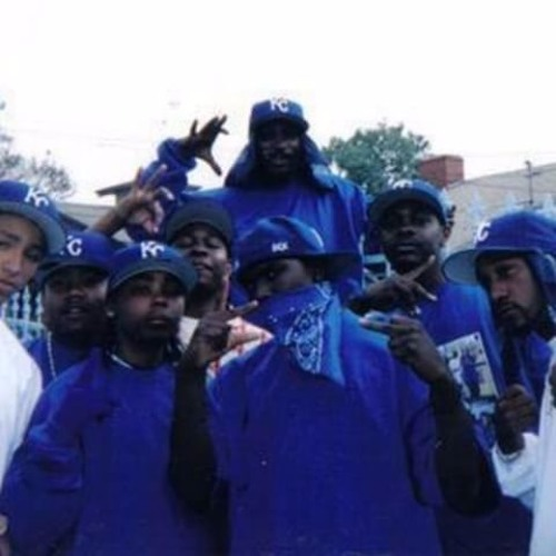 an overview of the gang crips They lead the revolt against the crips and were instrumental in creating the bloods gang what bloods call crips but since this was a brief overview of.