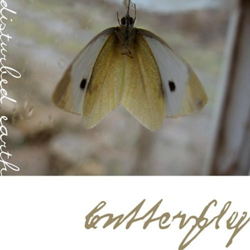 Disturbed Earth - Butterfly (exerpt)