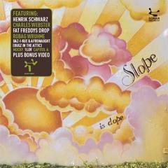 Slope - Basscheck (Forss Conservative mix)