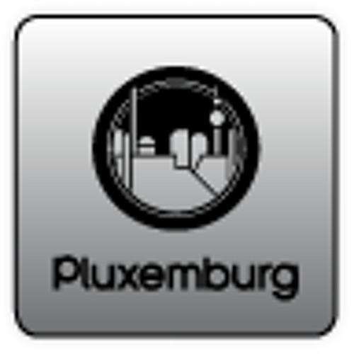 pluxemburg.com