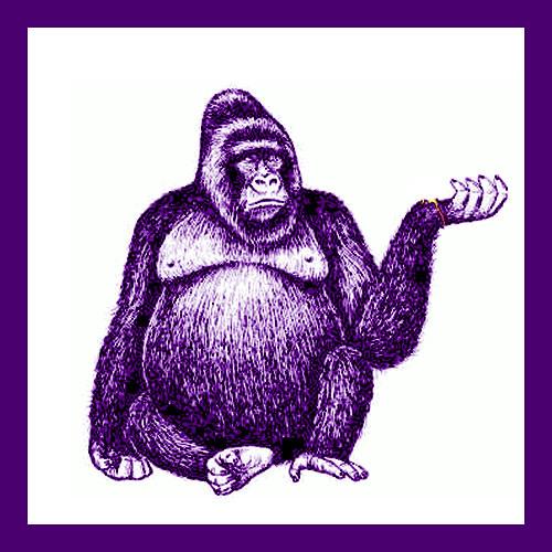 Joris Delacroix - Funky Kong (Dualton Rework)