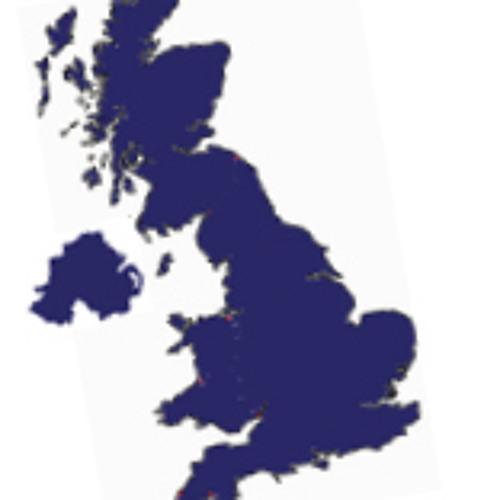 Digital NHS, Privacy, Community, Digital Britons (Short reports)