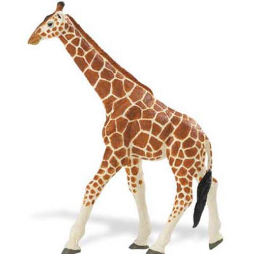 The Adventures of Albert The Giraffe