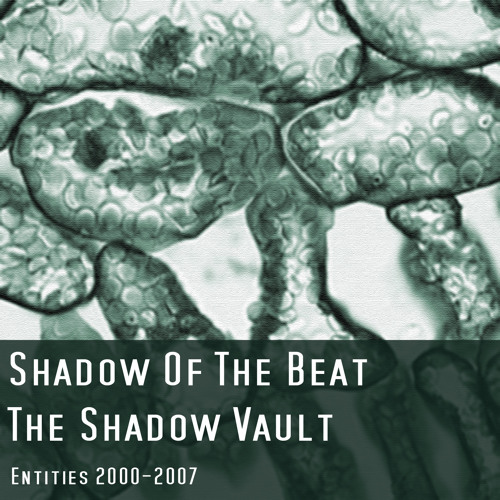 Shadow Of The Beat - Scared Away (2001)