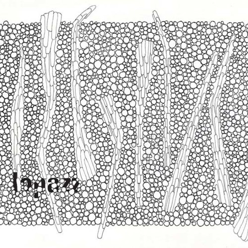 lopazz - process part 148