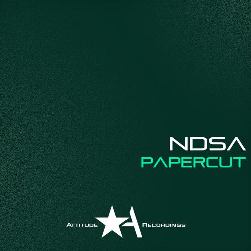 NDSA - Papercut