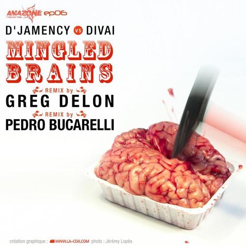 D'JAMENCY Vs. DIVAI - Mingled Brains EP /// Amazone Records - FR