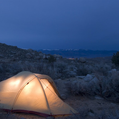Ambient Camping 25