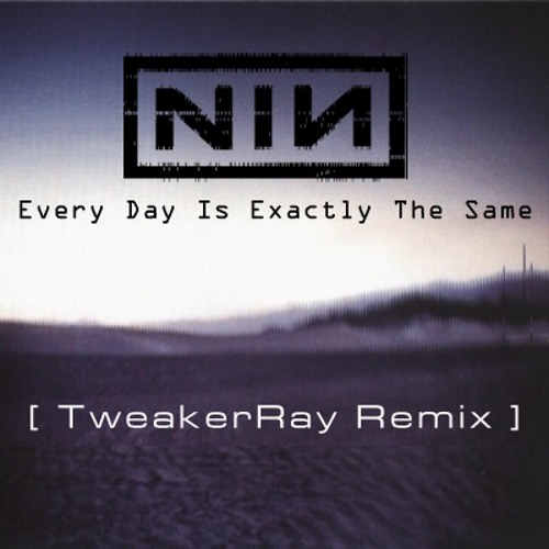 Nine Inch Nails - Every Day Is Exactly The Same ReMix