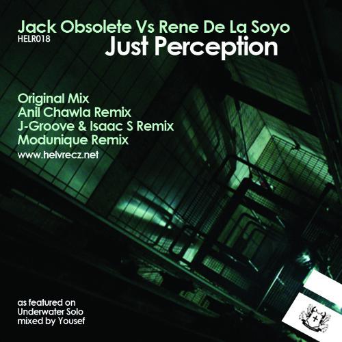 Just Perception (Anil Chawla Remix)