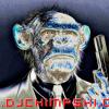 DJ Chimpski - Dirty Monkey Mess