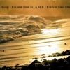 Phoenix & 3Loop - Rachael Starr vs. A.M.R - Forever Sand Dunes