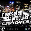Reggaeton Producer Grooves - Sample Pack Demo