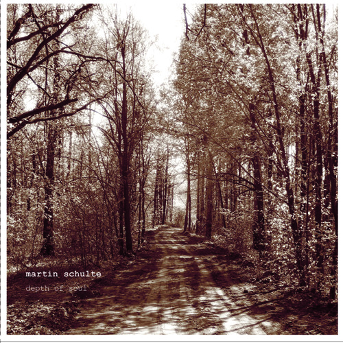 martin schulte - lant002 - depth of soul (cd,album) [preview]