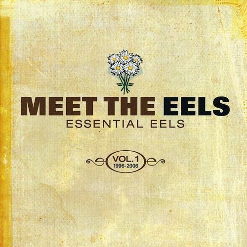 06  Eels - Last Stop This Town