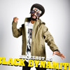 """Buckshot & Sean Price """"Can't Fight the Feeling"""" (Produced By 9th Wonder & Dan The Man)"""