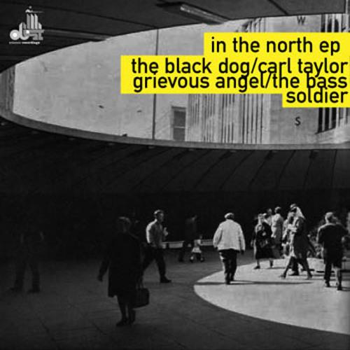 Tesco (Darkhaus) - The Black Dog
