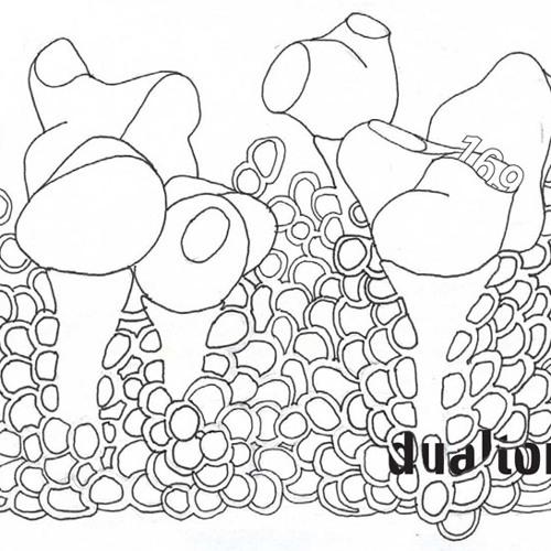dualton - process part 169