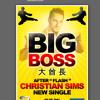 Christian Sims - BIG BOSS (teaser) mp3