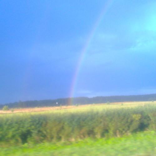 Finleys rainbow skank mix