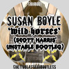 Susan Boyle - Wild Horses (Scott Harris' Unstable Bootleg)