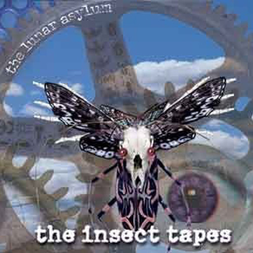 The Insect Tapes