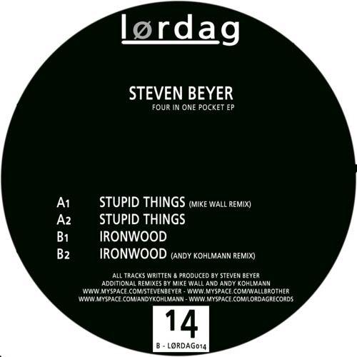 steven beyer-stupid thing