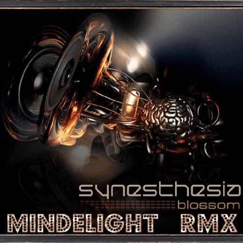 Synesthesia - Blossom (Mindelight RMX)