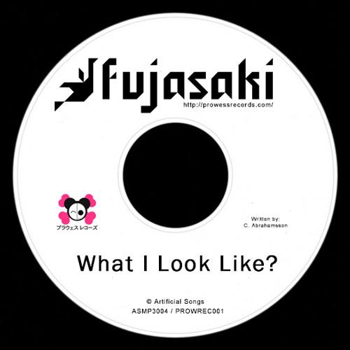 Fujasaki - What I Look Like (Part 1)