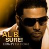 Al B. Sure! - Lady In My Life