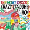 Crazy Yes Dumb No (Enright House Remix)