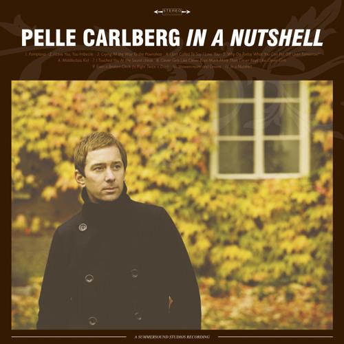 Pelle Carlberg - I Love You, You Imbecile