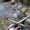 Small stream and Bird 小さな流れと野鳥 mp3