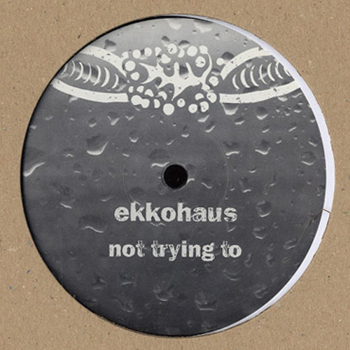 Ekkohaus - Not Trying To (feat. Robert Würz) [brut! 09]