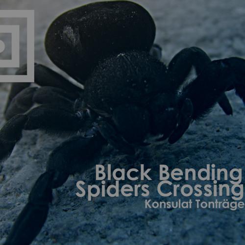 Black Bending - Spiders Crossing (Patrick Arbez Remix) - Promo Cut Download