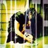 Free Download Ani DiFranco - Untouchable Face Mp3