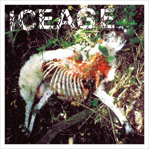 """Iceage (7"""")"""