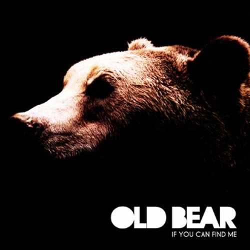 Old Bear - Toss of a coin // If you can find me