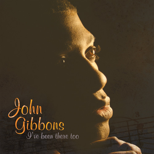 "John Gibbons//Folksoulbrother ""I've Been There Too"""