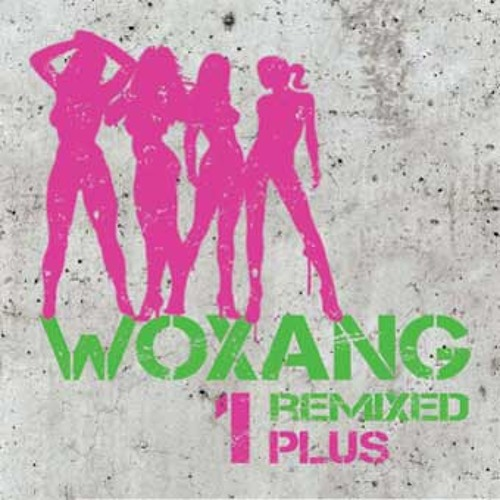 woXang remiXed by tenderboy  - Tender Tickles - CD Release 2009